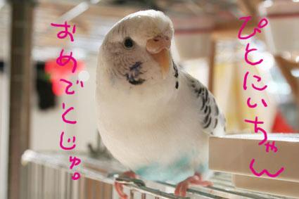 IMG_9395.jpg