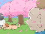 桜…開花時期が年々早くなり、見る余裕も無くなっている。