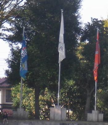07 Nov 07 - Flags