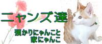 furu200-87ニャンズ元気バナー大