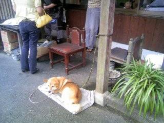 英彦山食堂2