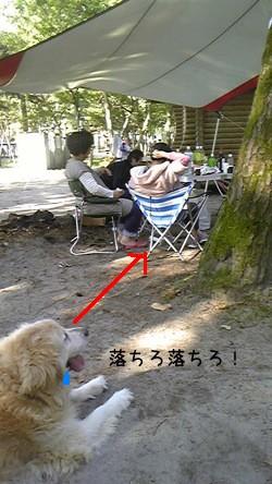 Image220_20090511094415.jpg