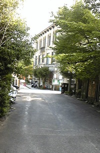 Image554.jpg