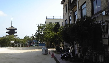 Image555.jpg