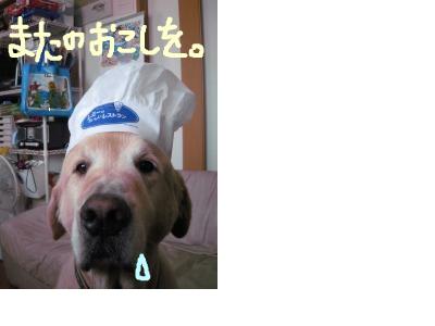 snap_futagotei_200893175814.png