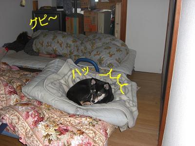 200223-5.jpg