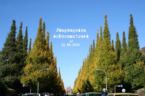 IMG_0014のコピー