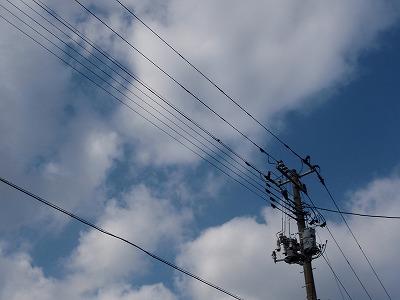 見上げた電柱と空