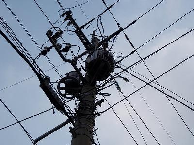 電柱を見上げる