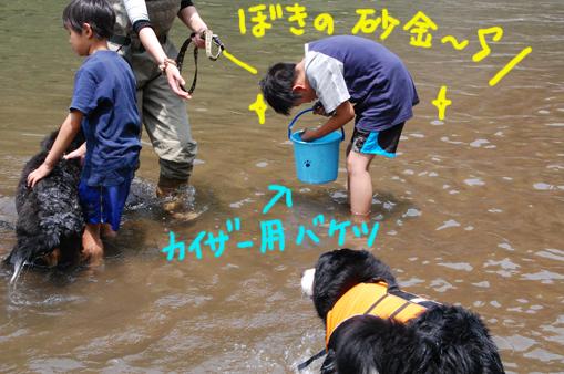 arienaikaiwa2.jpg