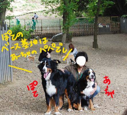 be-sukichi.jpg