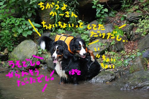 daimuboukou3.jpg