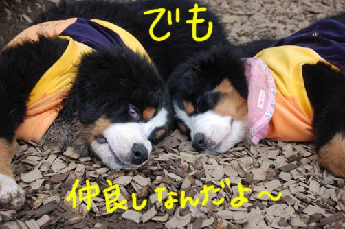 demonakayoshi1.jpg