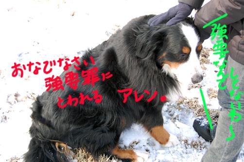 kyouyouzai_20090406144630.jpg