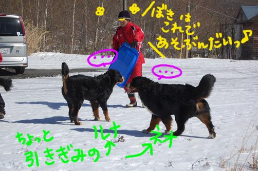 ma-kunnsori.jpg