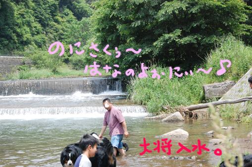 taisyou1_20090628223640.jpg