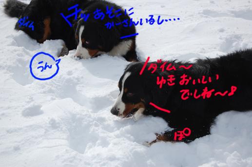 warudakumi2.jpg