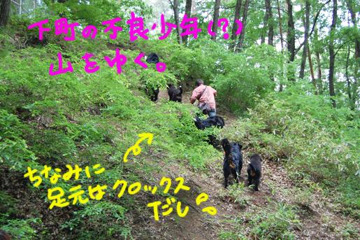 yamawoyuku.jpg