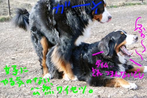 yarukinashi.jpg