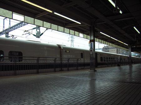 RIMG1334.jpg