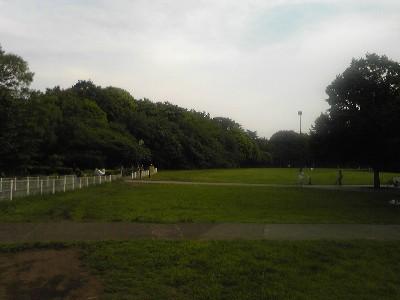 090510砧公園