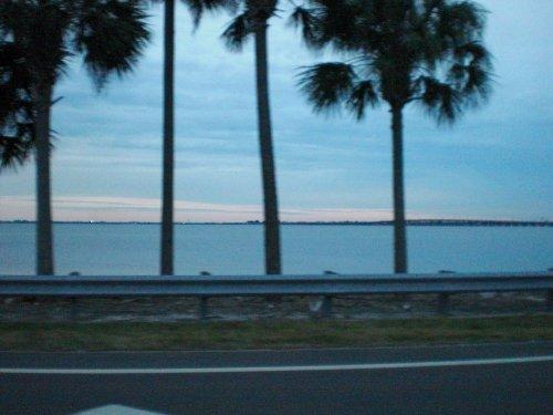 フロリダ 092