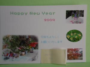 P1010970_convert_20090101134636.jpg