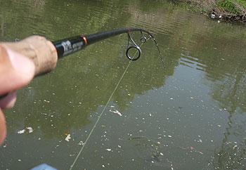 (注)陸派・・草魚用のロッドではありません。