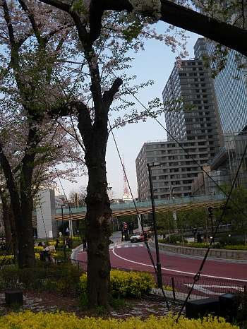 東京ミツドタウンの桜4