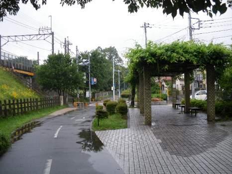 雨の遊歩道A