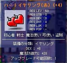 20061121211157.jpg