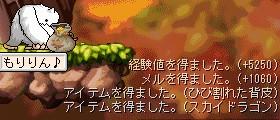 20070205232732.jpg