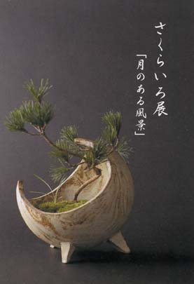 sakurairo.jpg