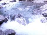 綺麗な川の流れ