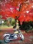 入鹿池の紅葉とエストレヤ