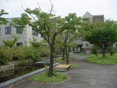 富山大学高岡 (22)