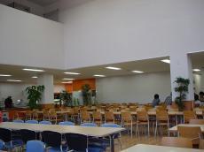 岐阜大学 (13)