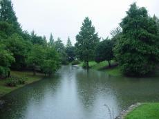 岐阜大学 (40)