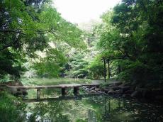 東京大学本郷 (19)