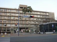 九州大学六本松地区 (14)