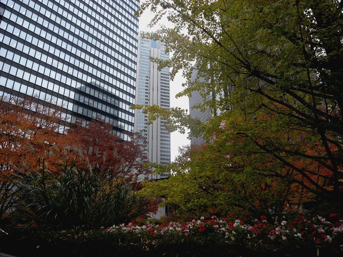 Color of TOKYO