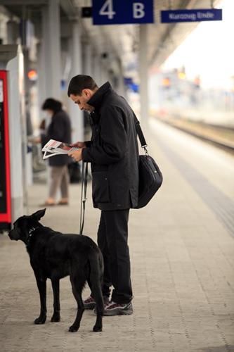 黒い犬と人