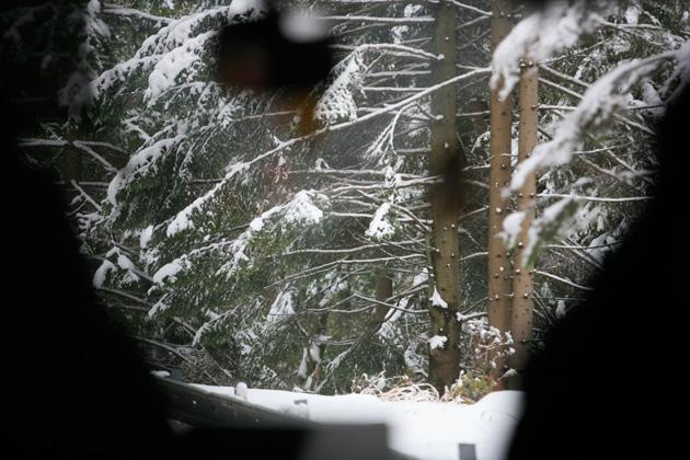 snowslovakia.jpg