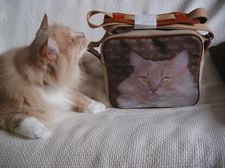 Moca bag