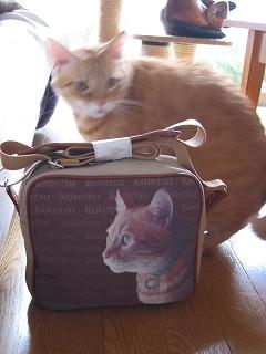 Kotetsu bag