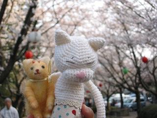 お花見 2007②