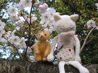 お花見 2007③