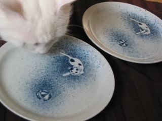 猫のお皿1