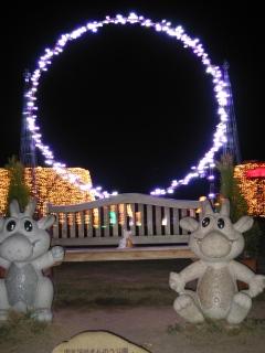 コスモスフェスタ2007-7