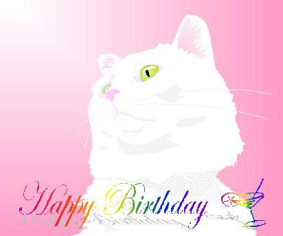 Jill birthday